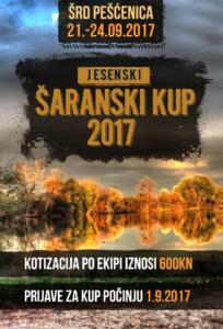 SARANSKI_KUP